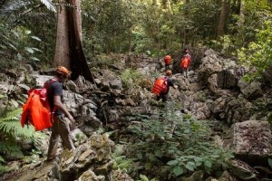 One day caving and trekking National park