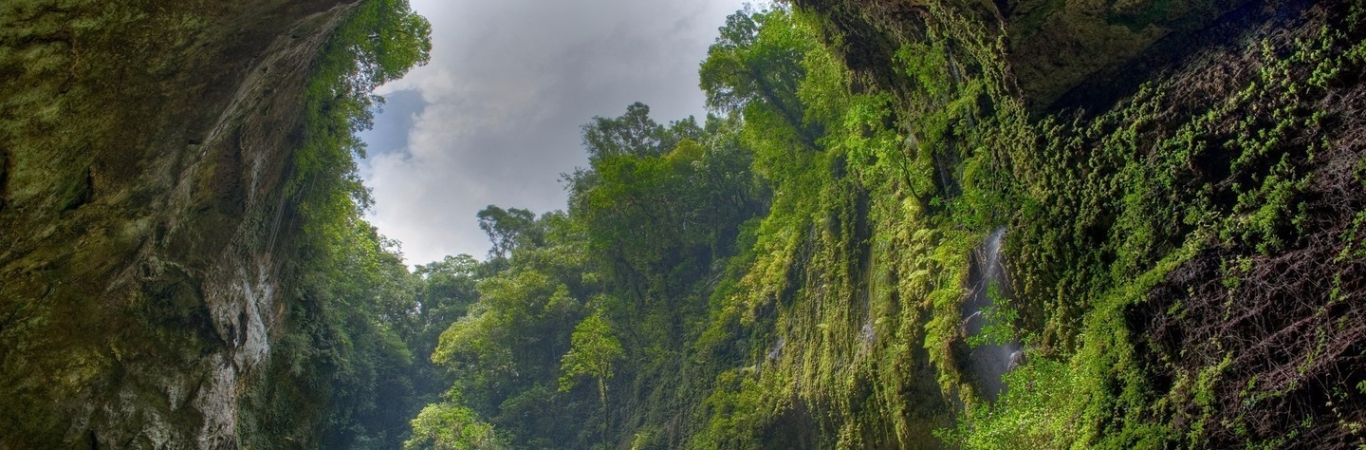 Son Doong Cave 4